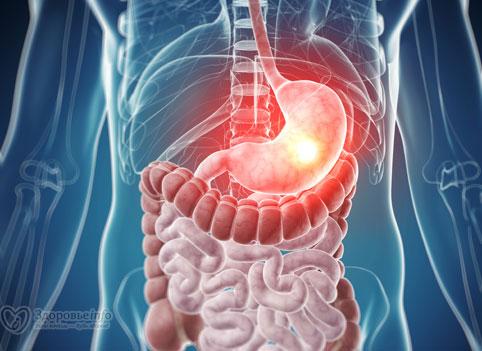 Восстановление кишечника после курения
